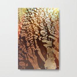 Dichro Delusion  Metal Print