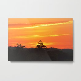 Red Sky Sunset with Red Robin Metal Print