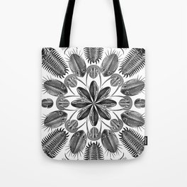 Trilobite and Fossil Mandala, Collage using Ernst Haeckel illustrations Tote Bag
