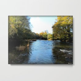 Upstream Metal Print