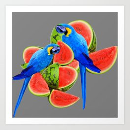 TWO BLUE MACAWS IN WATERMELON ABSTRACT GREY ART Art Print