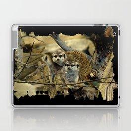 African Meerkat Trio Laptop & iPad Skin