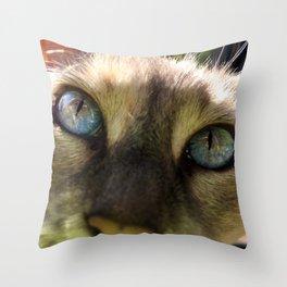 Cat's Eye Spy Throw Pillow