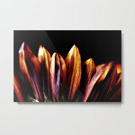 Blossoming Sunflower Metal Print