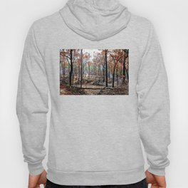 Fire damaged forest Hoody