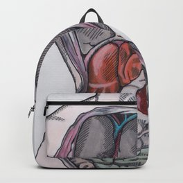 The Colored Anatomy of The Corset Backpack