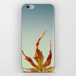 Acer Palmatum Leaf iPhone Skin
