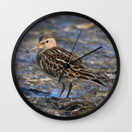 Party with Pectoral Sandpipers Wall Clock