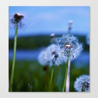 weed Canvas Prints featuring Weed by Libby Rose