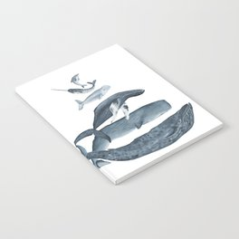 whale gatherin Notebook