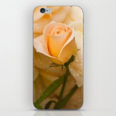 New Flower iPhone & iPod Skin