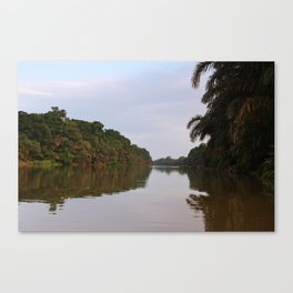 Jungle View of The Pacuare River Canvas Print