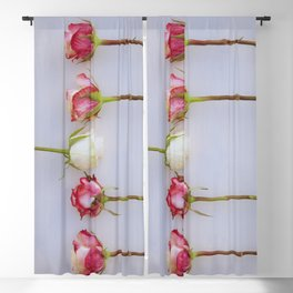Roses II Blackout Curtain