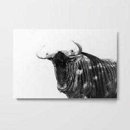 Mr Wildebeest Metal Print