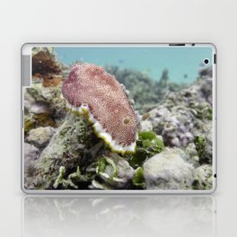 Red Nudibranch Laptop & iPad Skin