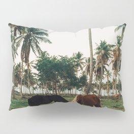 Horses in Samana, Dominican Republic Pillow Sham