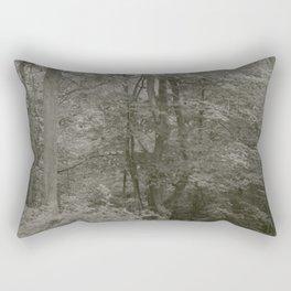New Paltz, 1 Rectangular Pillow