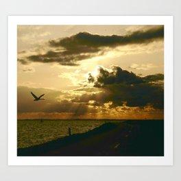Swan Flight Art Print