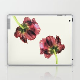 Another point of view Laptop & iPad Skin
