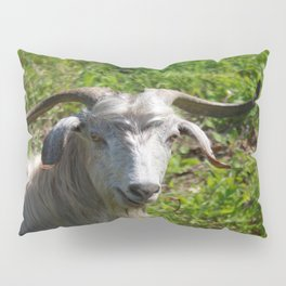 Portrait of A Horned Goat Grazing Pillow Sham