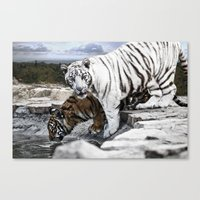 tigers Canvas Prints featuring Tigers by Pawel Denkowicz