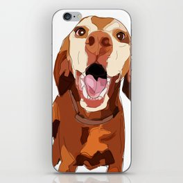 Beautiful Vizsla iPhone Skin