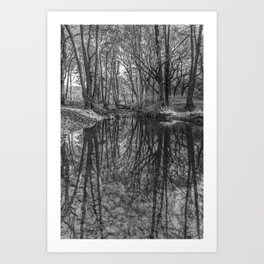 Reflections in the Brook Art Print