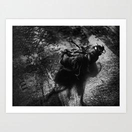 catkill Art Print