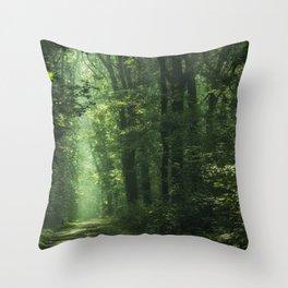 Another Sunlit Woodland Throw Pillow