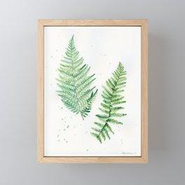 Fern Study 1 Framed Mini Art Print