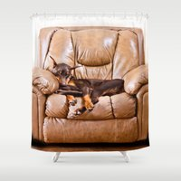 doberman Shower Curtains featuring Ruff Life by Paw Prints By Jamie