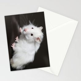 Teddy Bear Hamster Stationery Cards