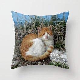 Furball Throw Pillow