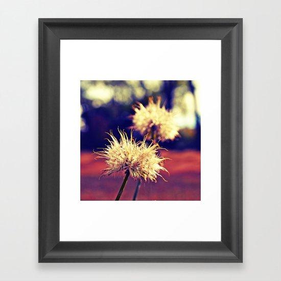 Summer dandelions Framed Art Print