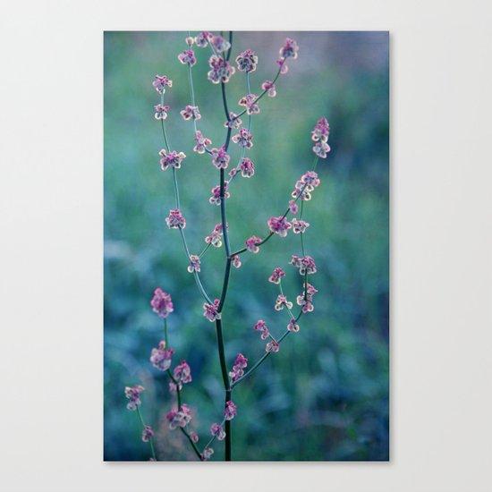 spell Canvas Print