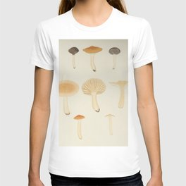 Naturalist Mushrooms T-shirt
