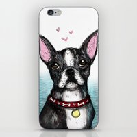 boston terrier iPhone & iPod Skins featuring Boston Terrier by Inked in Red