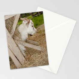 Little billy goat Stationery Cards