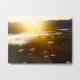 Peaceful Sunset Metal Print