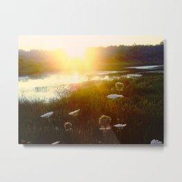 Peaceful Sunset Metal Print