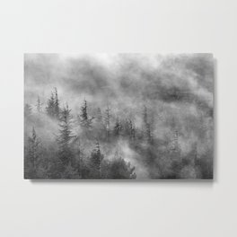 Misty forest. BW Metal Print