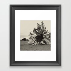 The Everchanging Spectrum of a Life Framed Art Print