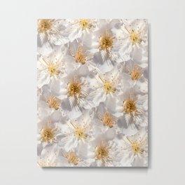 White Cherry Blossoms Pattern Metal Print