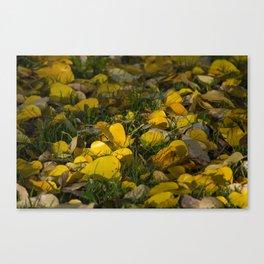Autumn Ground Canvas Print