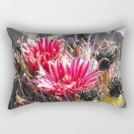 Barrel Cactus in Late Bloom, Red Flowers, Yellow Fruit Rectangular Pillow