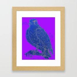 Hawk Lines Framed Art Print
