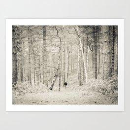 Forest Walk I Art Print