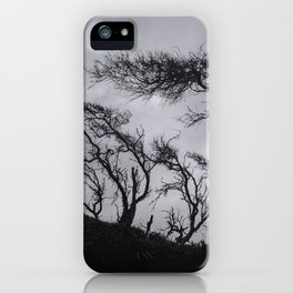 Bent Trees, Caswell Beach iPhone Case