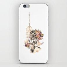 Oh my OWL! iPhone & iPod Skin