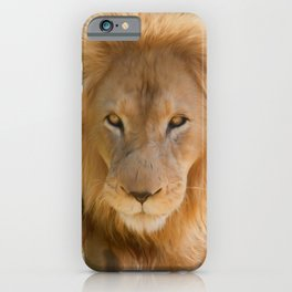 You Look Like Lunch (digital painting) iPhone Case